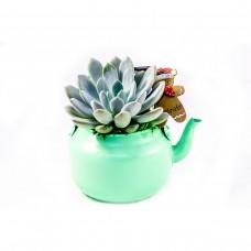 Зелен чайник с цвете и коледна украса