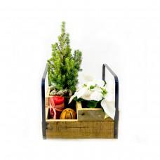Коледна композиция в дървен сандък